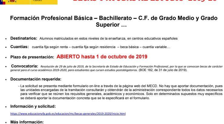 BECAS Y AYUDAS AL ESTUDIO 2019-20